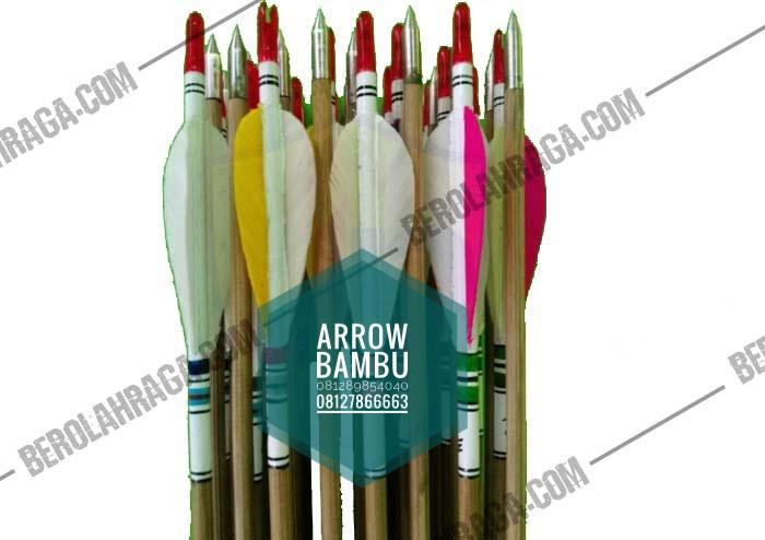1. Arrow bambu_edited